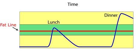 Fat Graph 3
