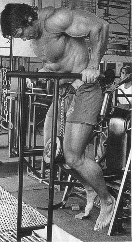 Weighted Dips For The Chest And Triceps