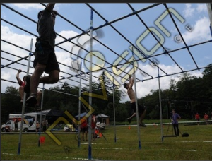 spartan monkey bars